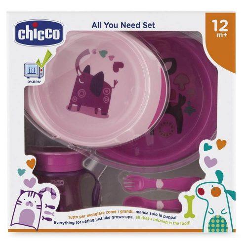 Set Pappa 12 mesi + Rosa Chicco – 16201100000